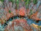 fall_blanket_2.jpg