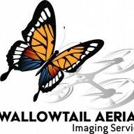 swallowtailais